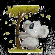Koala attacking tree