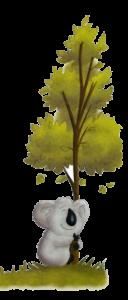 Koala hugs tree